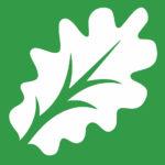 Live Oak Clinic Leaf image